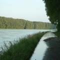 Hochwasser am Rhein in Germersheim am 13. August 2002