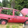 Bioauto