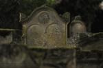 "161019_judenfriedhof_lustadt • <a style=""font-size:0.8em;"" href=""http://www.flickr.com/photos/10096309@N04/30395093426/"" target=""_blank"">View on Flickr</a>"
