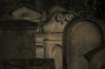 "161019_judenfriedhof_lustadt • <a style=""font-size:0.8em;"" href=""http://www.flickr.com/photos/10096309@N04/30395112146/"" target=""_blank"">View on Flickr</a>"