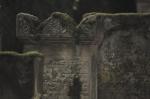 "161019_judenfriedhof_lustadt • <a style=""font-size:0.8em;"" href=""http://www.flickr.com/photos/10096309@N04/30395069736/"" target=""_blank"">View on Flickr</a>"